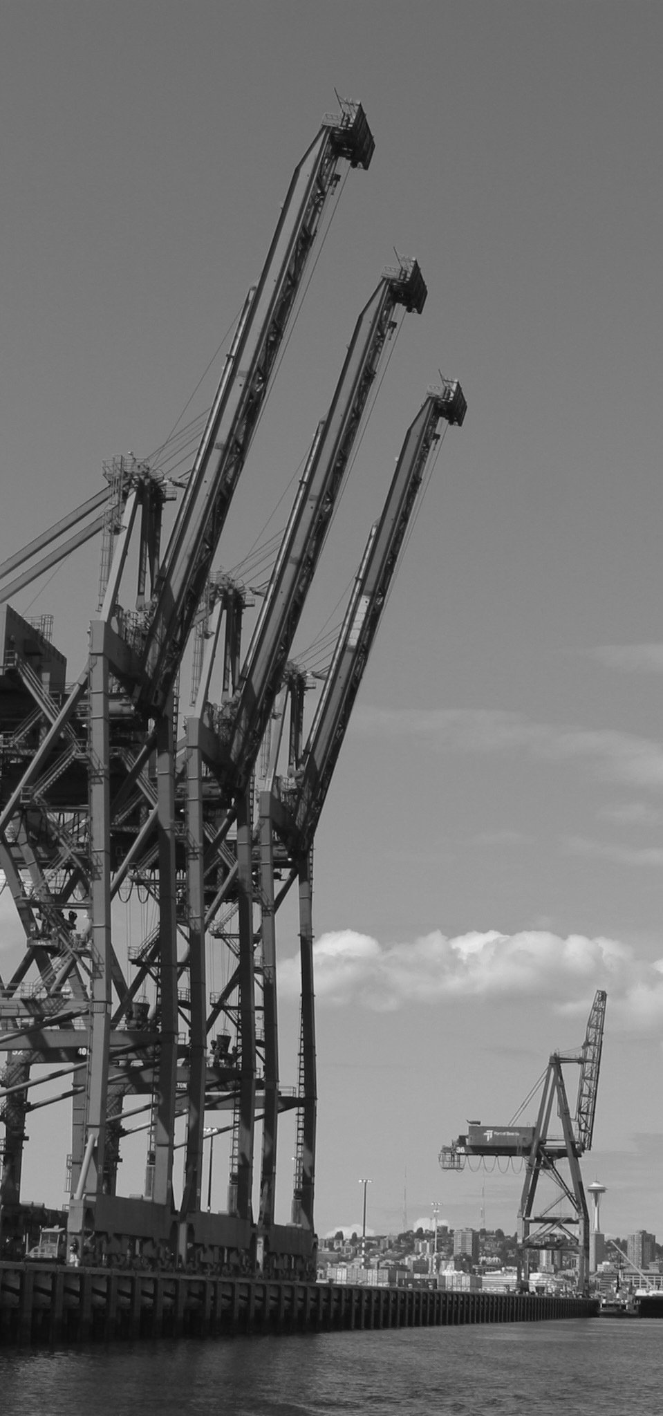 cranes-tall